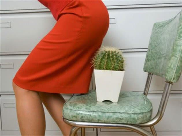 Попа и кактус