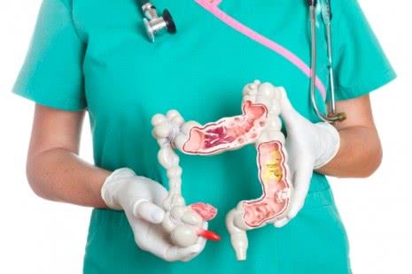 Врач и модель кишечника
