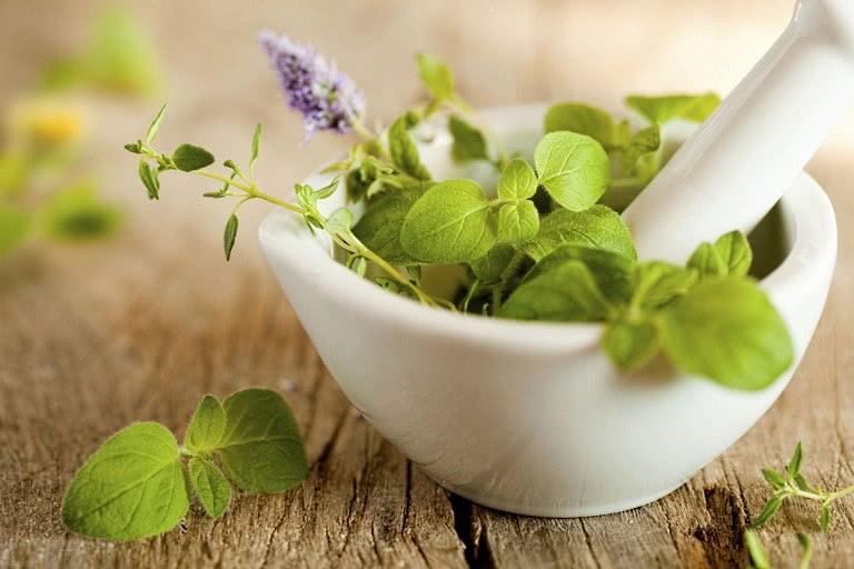 Лекарственные травы в миске