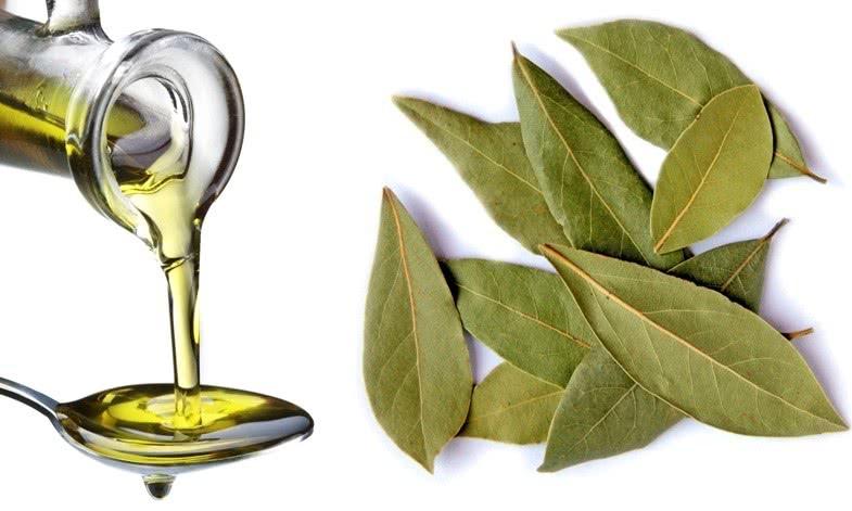 Растительное масло и листья лавра