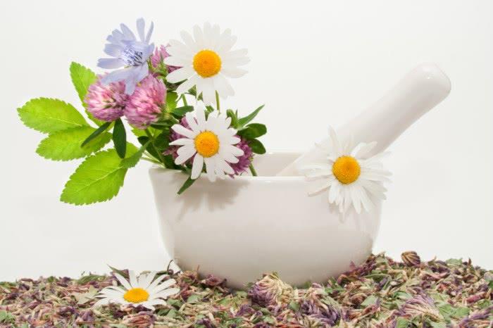 Лекарственные травы в ступке