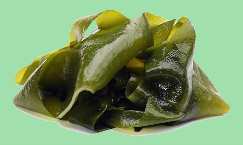 Действующее вещество свечей Натальсид альгинат натрия получают из водорослей