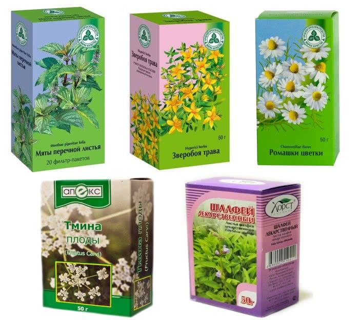 Травы для сбора для лечения дисбактериоза и профилактики колита