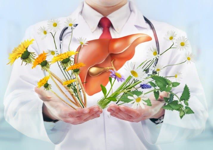 Лечение цирроза печени народными средствами, врач, лекарственные травы